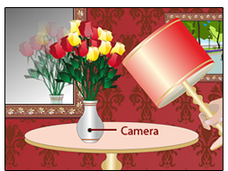 Spy Hidden Flower Pot Camera